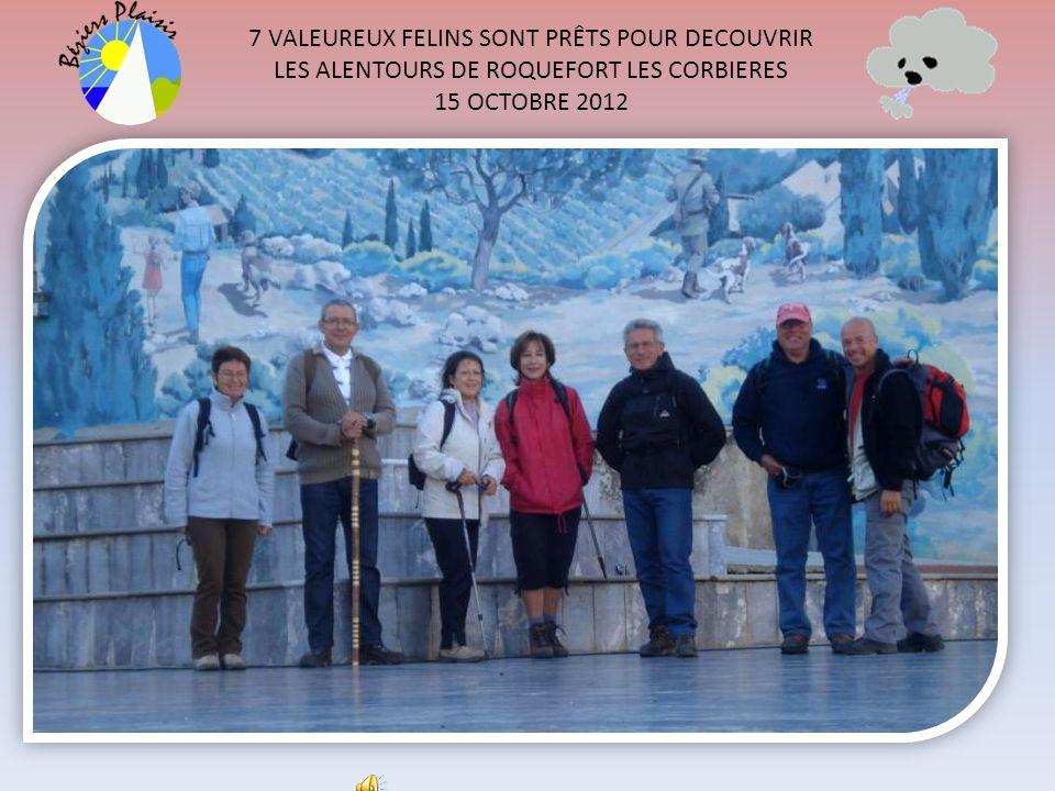 7 VALEUREUX FELINS SONT PRÊTS POUR DECOUVRIR LES ALENTOURS DE ROQUEFORT LES CORBIERES 15 OCTOBRE 2012