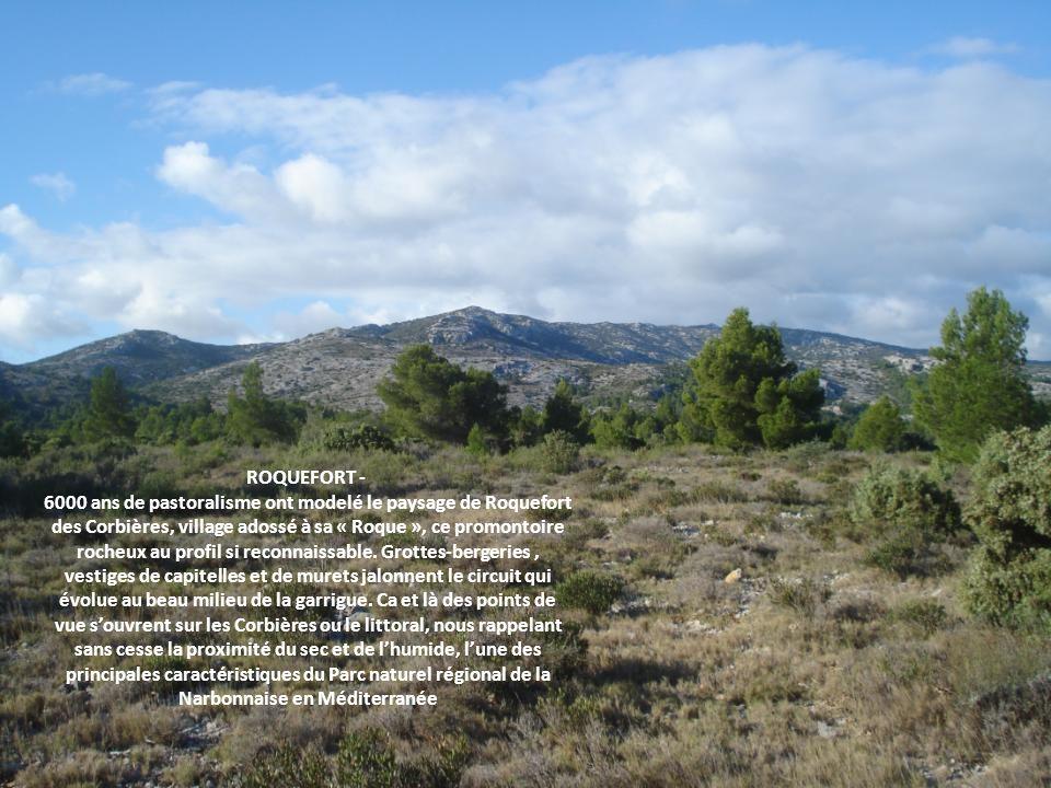 ROQUEFORT - 6000 ans de pastoralisme ont modelé le paysage de Roquefort des Corbières, village adossé à sa « Roque », ce promontoire rocheux au profil si reconnaissable.