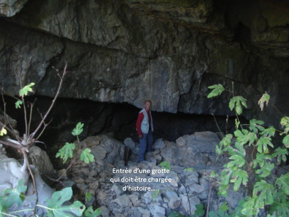 Entrée d'une grotte qui doit être chargée d'histoire…..