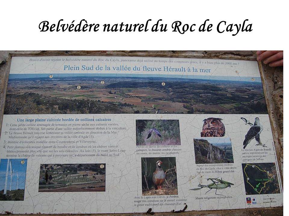 Belvédère naturel du Roc de Cayla