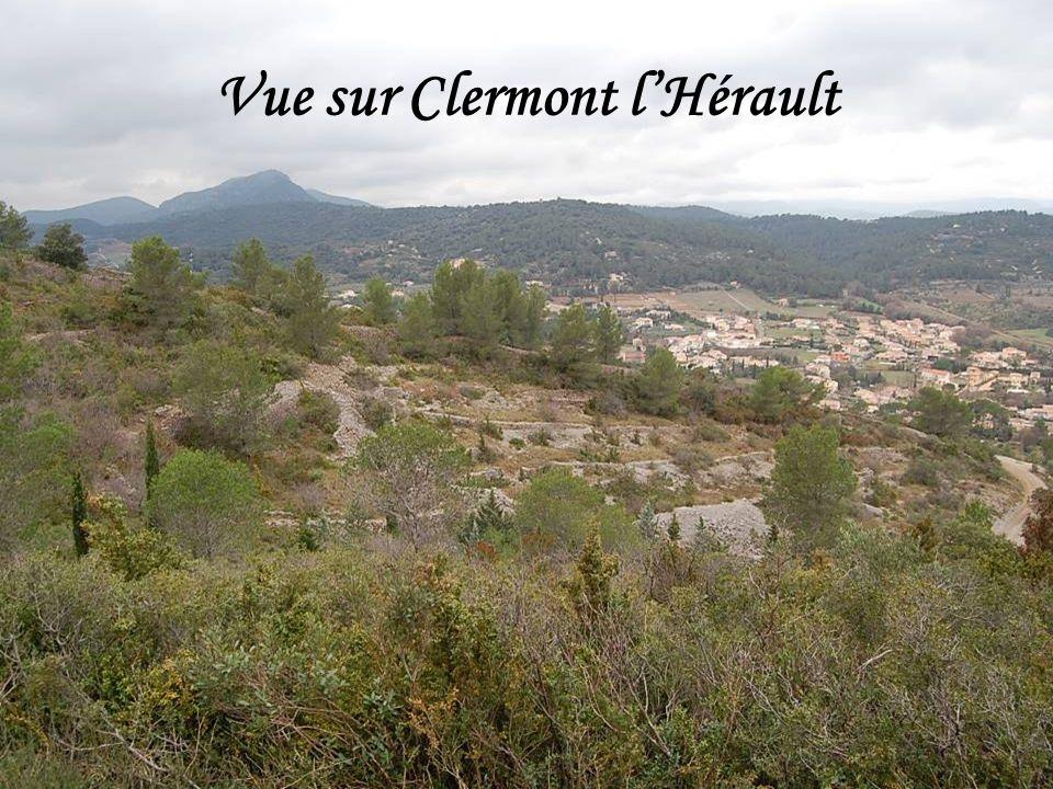 Vue sur Clermont l'Hérault