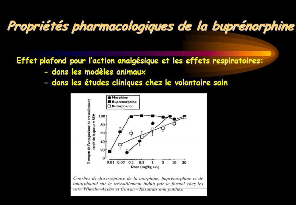 Propriétés pharmacologiques de la buprénorphine