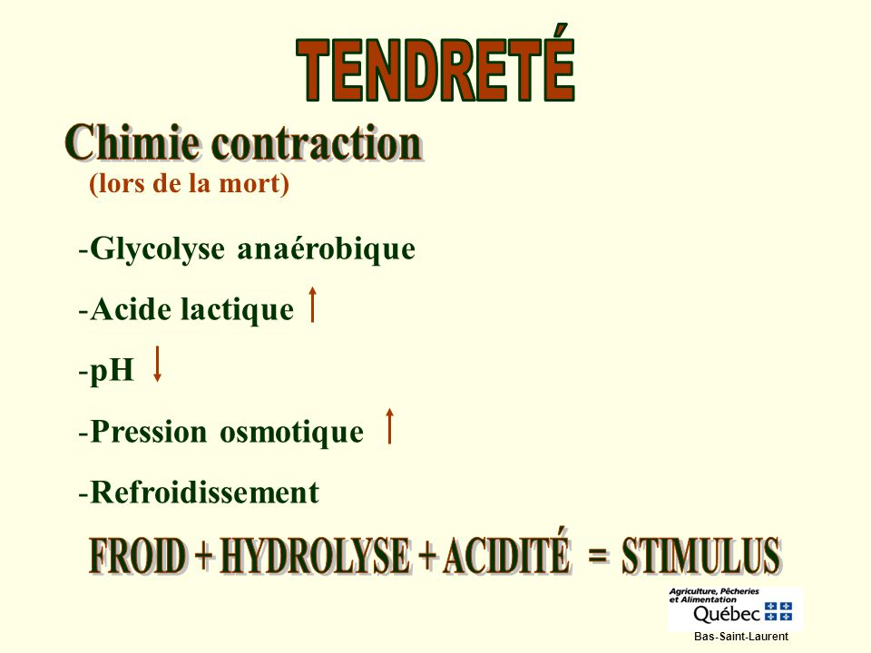 FROID + HYDROLYSE + ACIDITÉ = STIMULUS