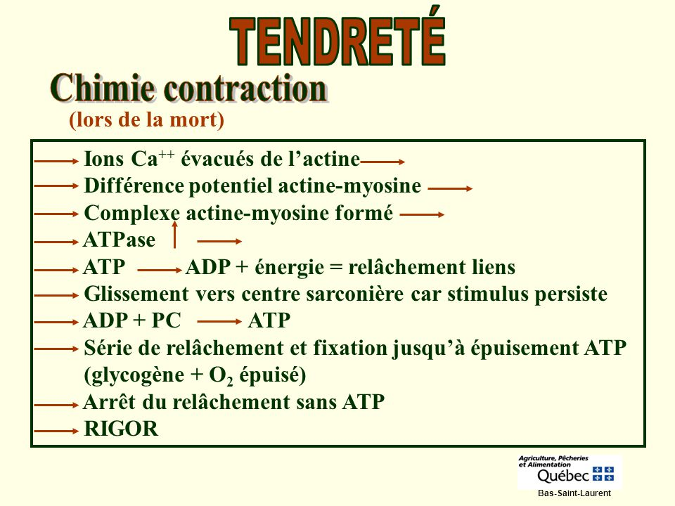TENDRETÉ Chimie contraction (lors de la mort)