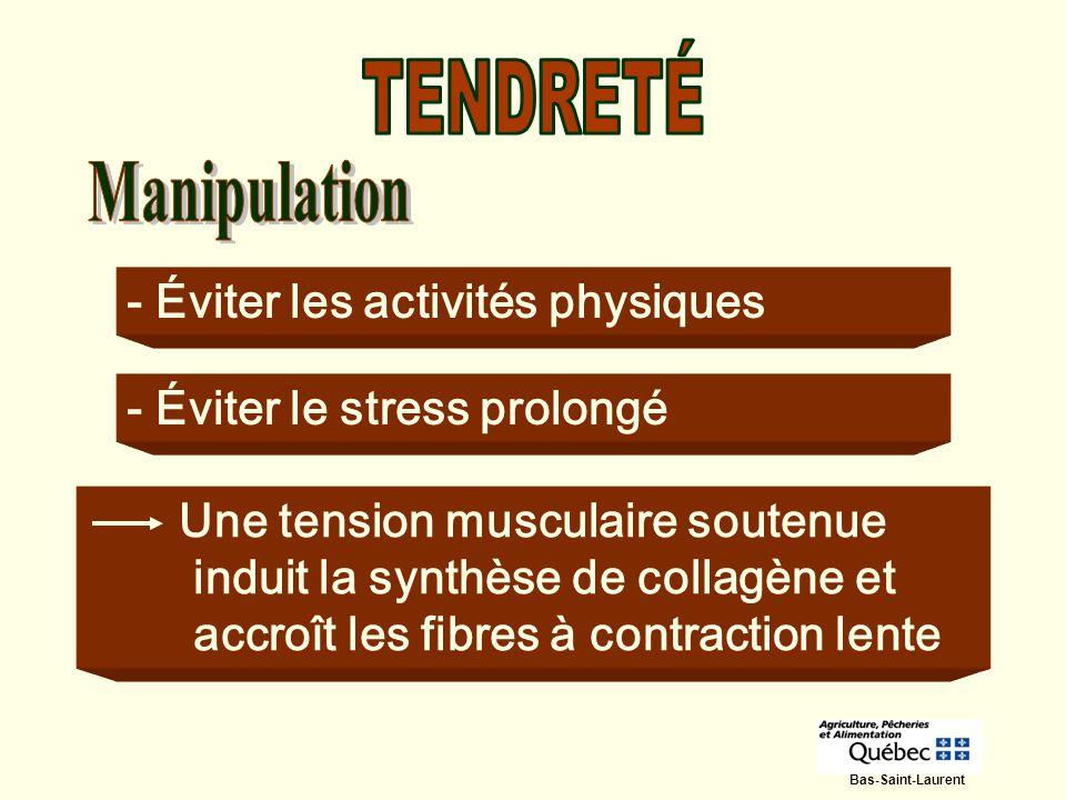 TENDRETÉ - Éviter les activités physiques - Éviter le stress prolongé
