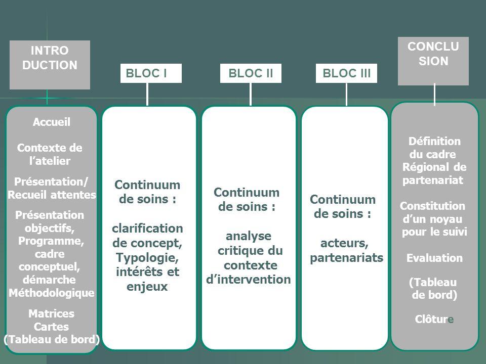 CONCLU SION INTRO DUCTION BLOC I BLOC II BLOC III Continuum de soins :