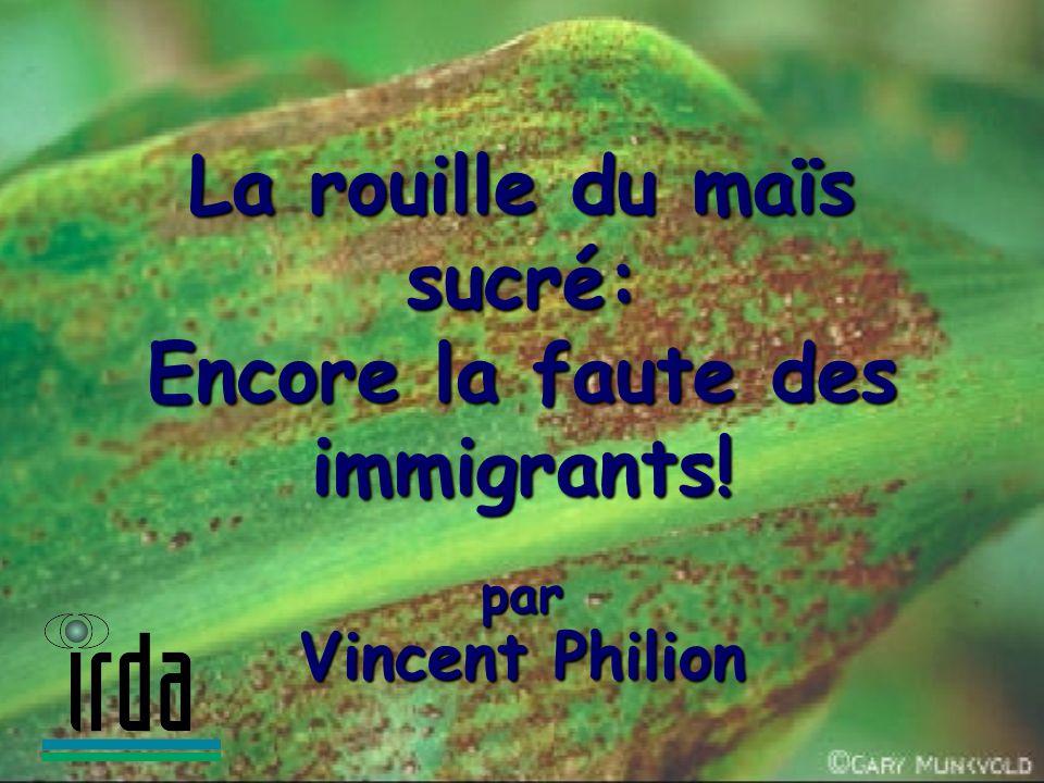 La rouille du maïs sucré: Encore la faute des immigrants!