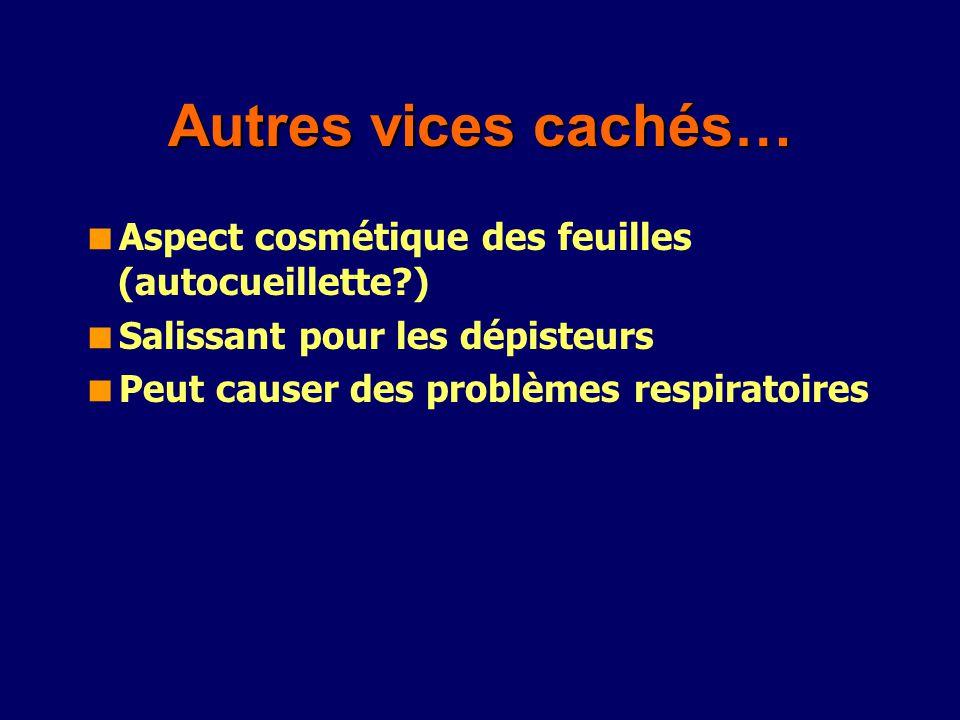 Autres vices cachés… Aspect cosmétique des feuilles (autocueillette )