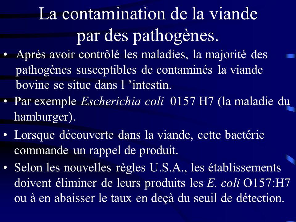 La contamination de la viande par des pathogènes.