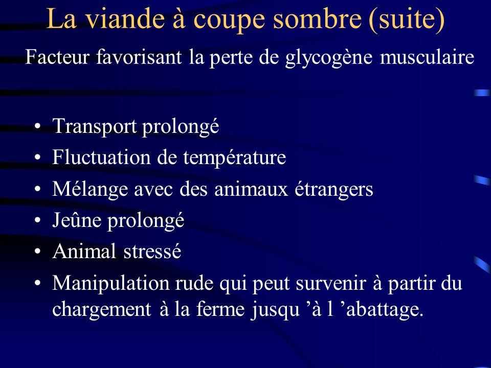 La viande à coupe sombre (suite) Facteur favorisant la perte de glycogène musculaire