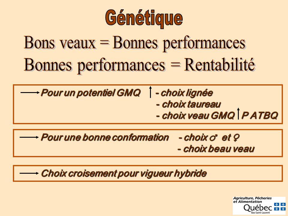 Bons veaux = Bonnes performances