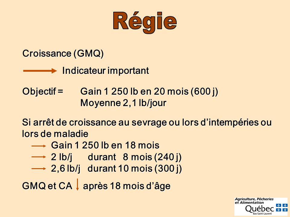 Régie Croissance (GMQ) Indicateur important