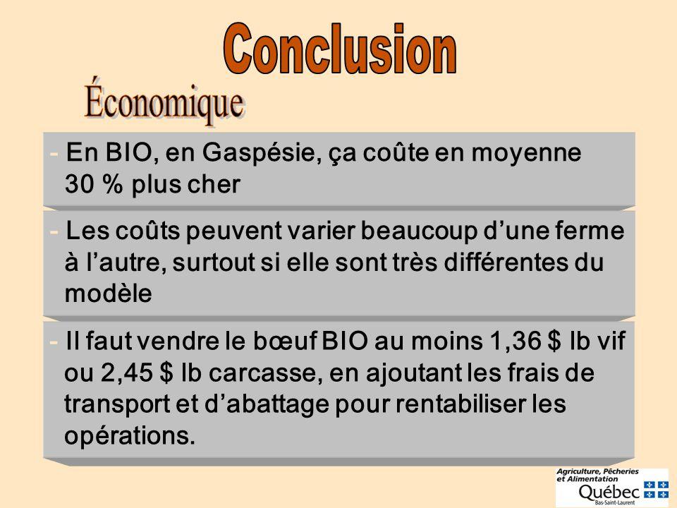Conclusion Économique