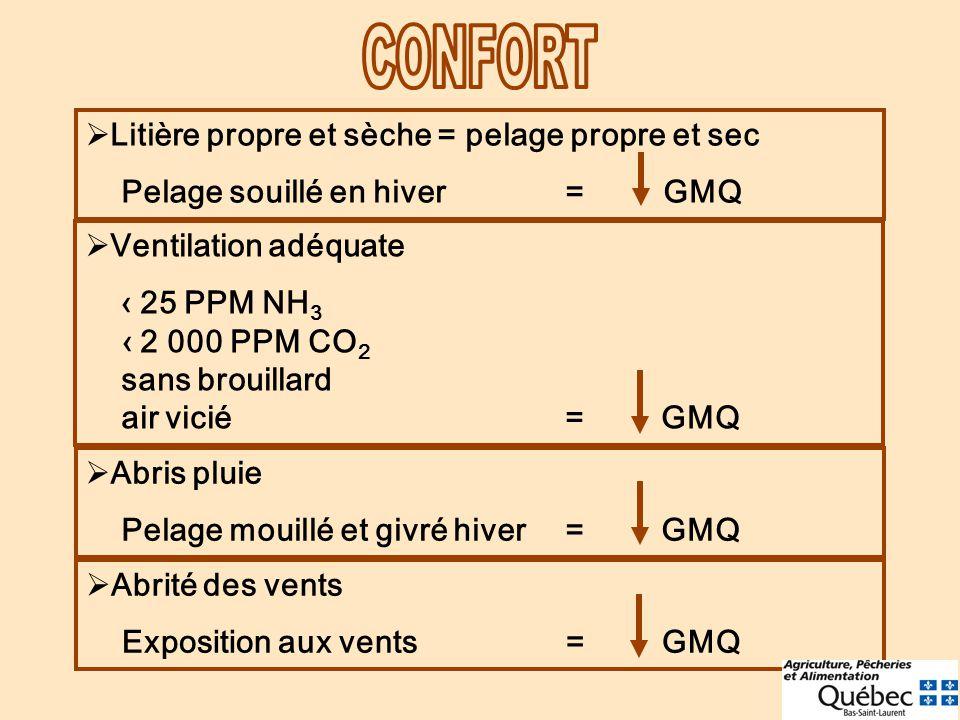 CONFORT Litière propre et sèche = pelage propre et sec