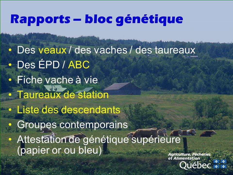 Rapports – bloc génétique