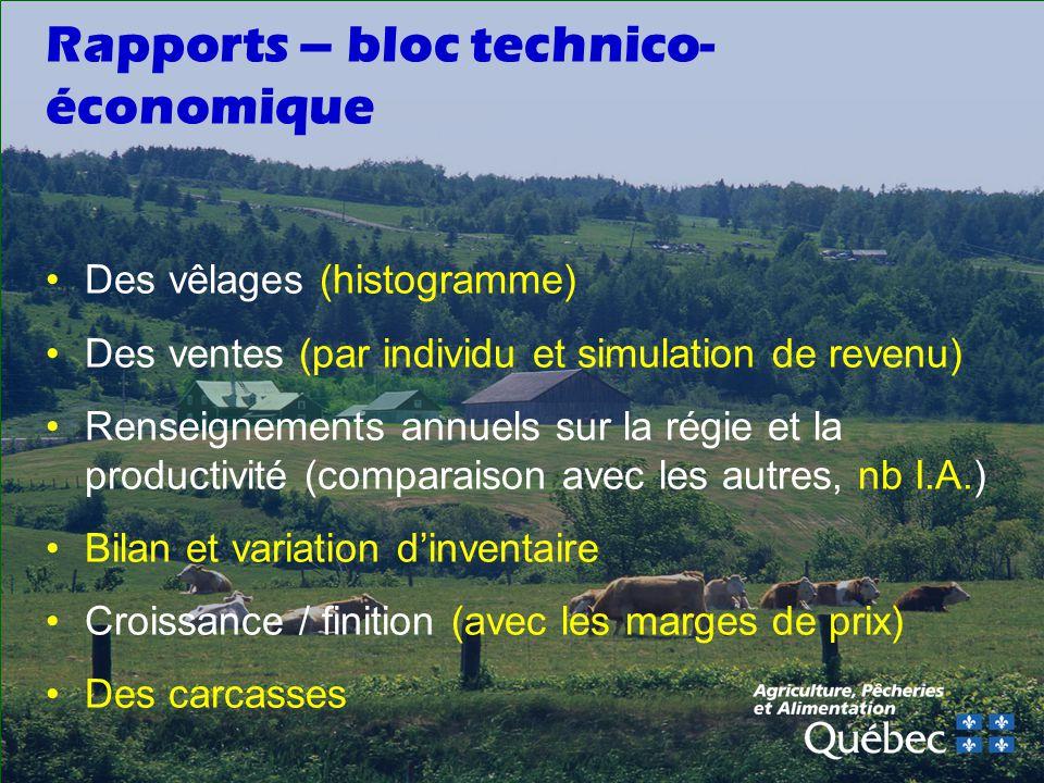 Rapports – bloc technico-économique