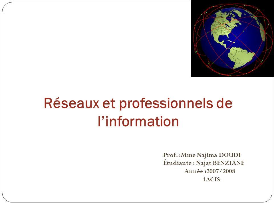 Réseaux et professionnels de l'information