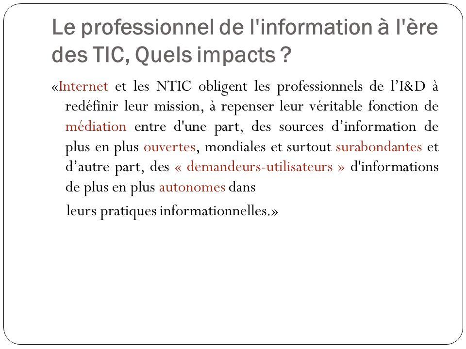 Le professionnel de l information à l ère des TIC, Quels impacts