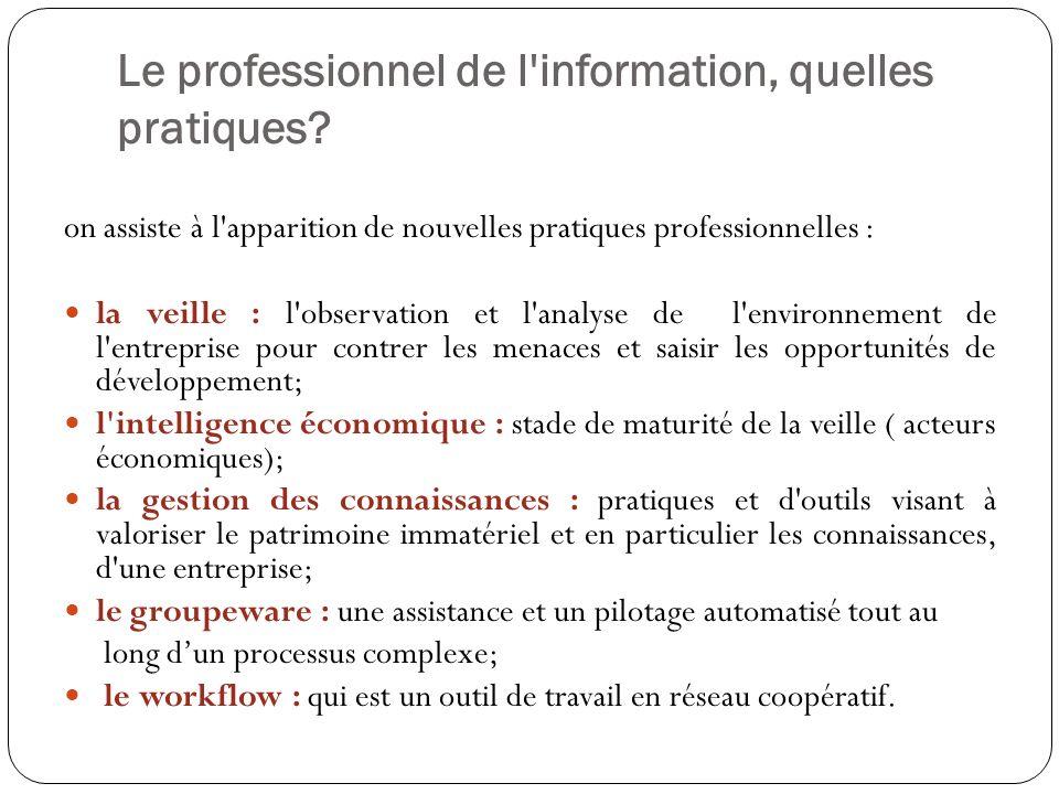 Le professionnel de l information, quelles pratiques