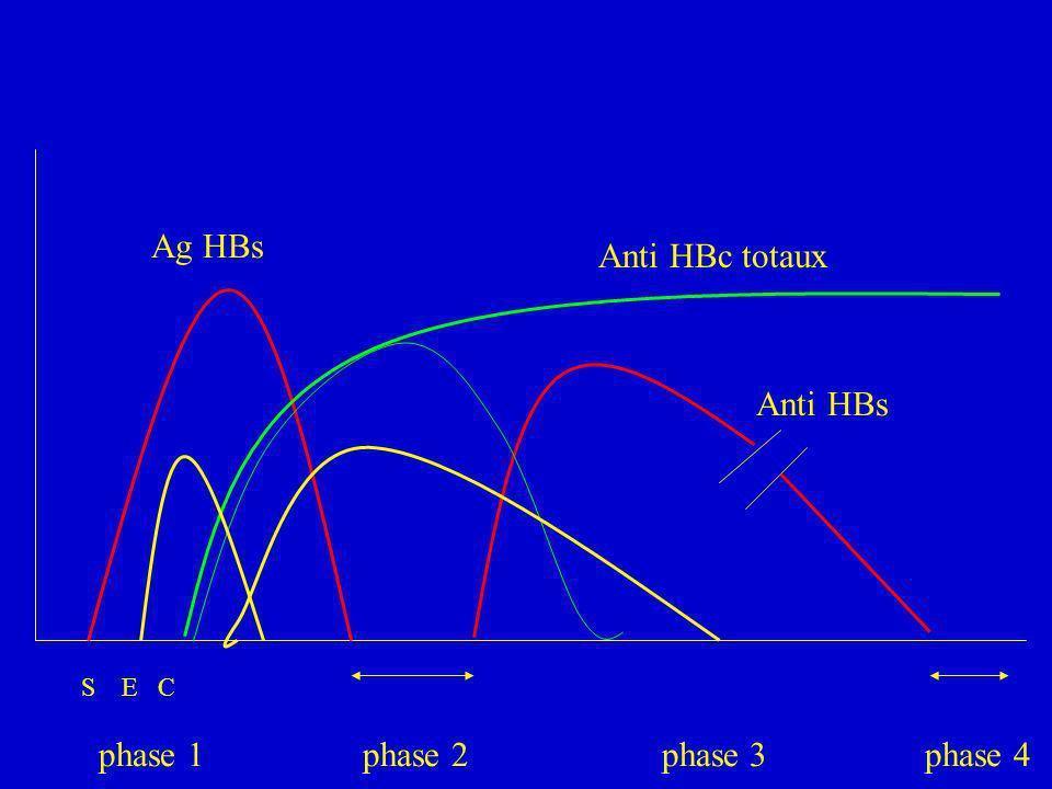 Ag HBsAnti HBc totaux.Anti HBs. S E C.