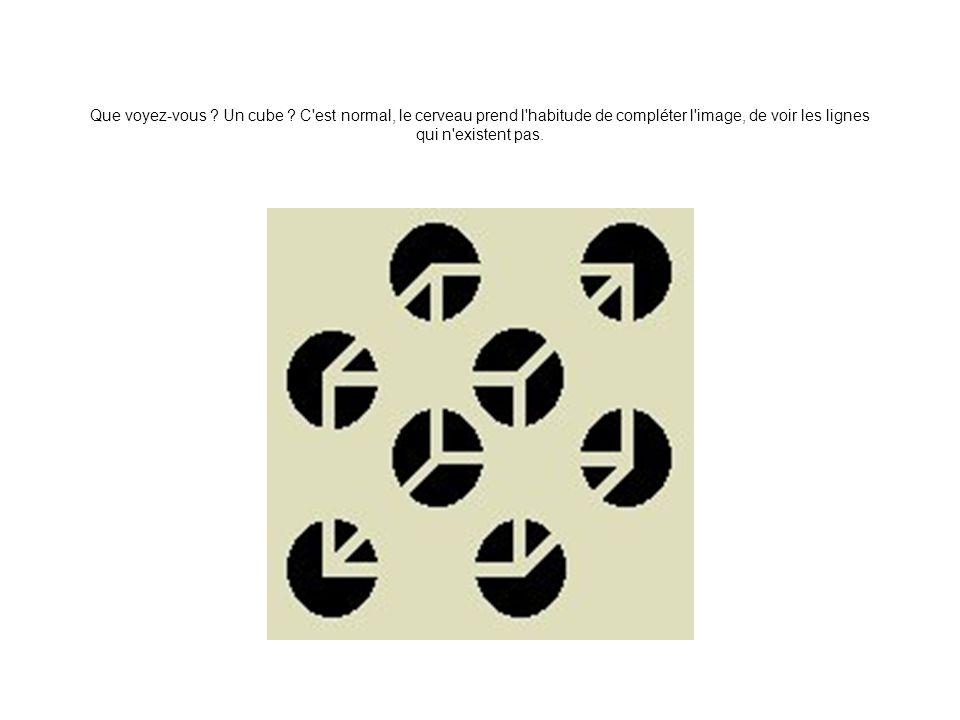 Que voyez-vous . Un cube .