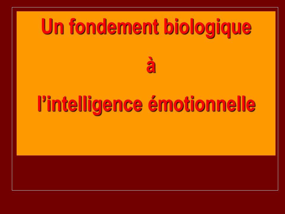 Un fondement biologique l'intelligence émotionnelle