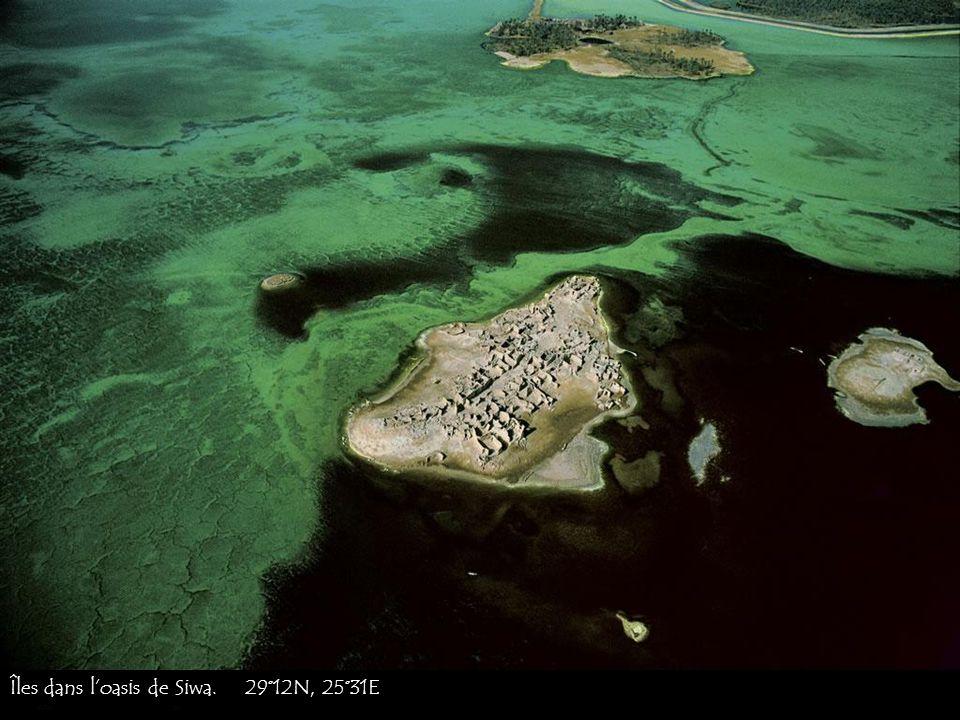 Îles dans l'oasis de Siwa. 29°12N, 25°31E