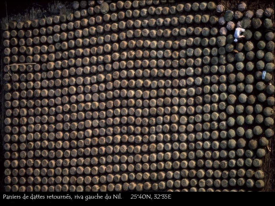 Paniers de dattes retournés, riva gauche du Nil. 25°40N, 32°35E