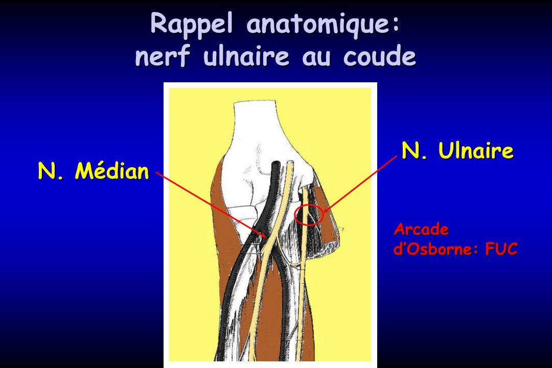 Rappel anatomique: nerf ulnaire au coude
