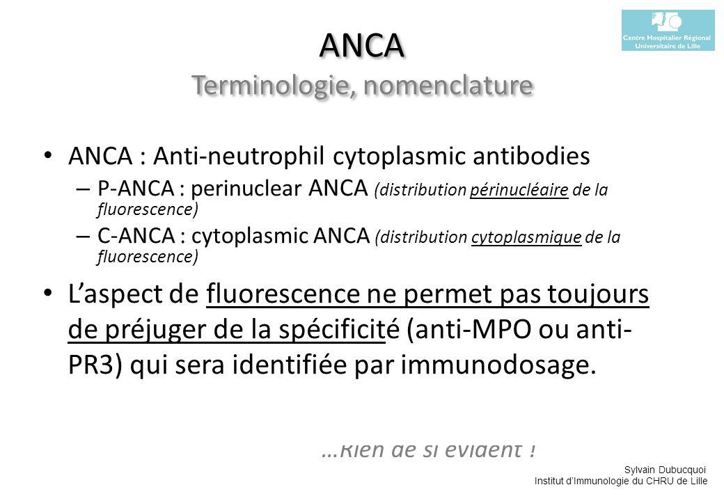ANCA Terminologie, nomenclature