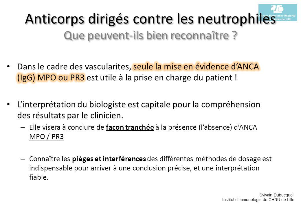 Anticorps dirigés contre les neutrophiles Que peuvent-ils bien reconnaître