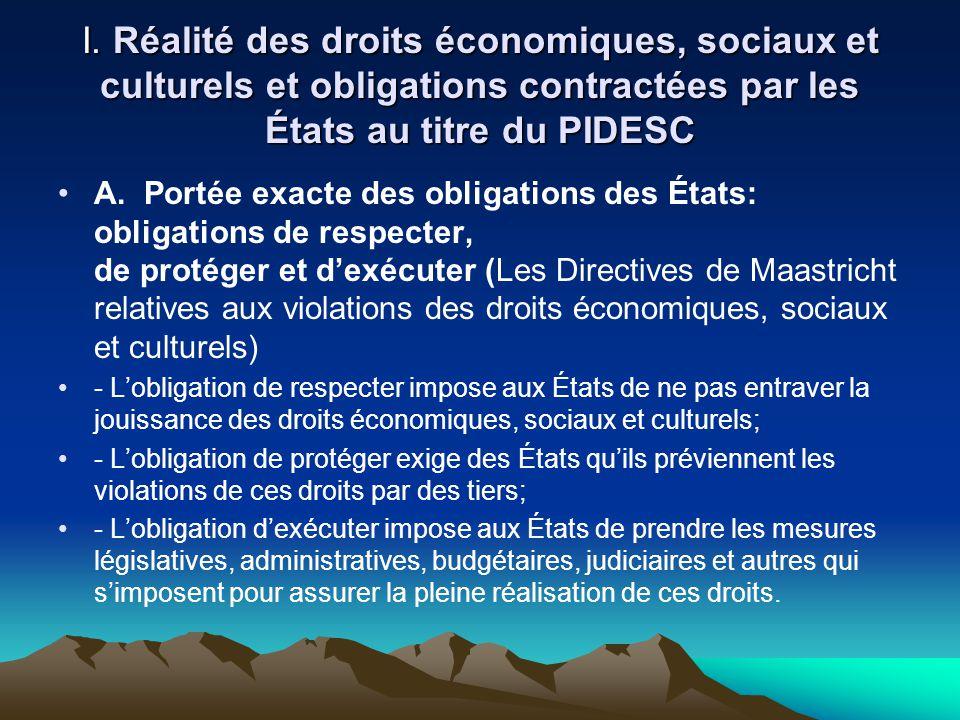 I. Réalité des droits économiques, sociaux et culturels et obligations contractées par les États au titre du PIDESC