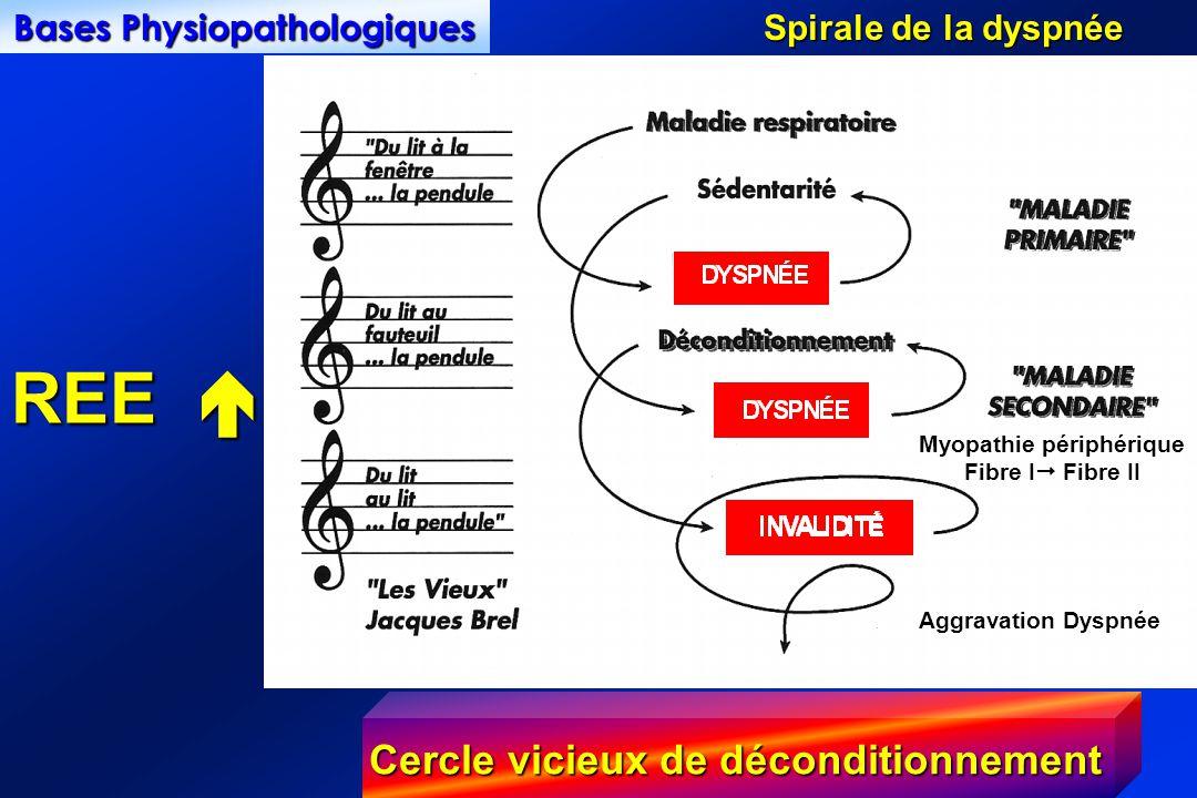 Bases Physiopathologiques Myopathie périphérique