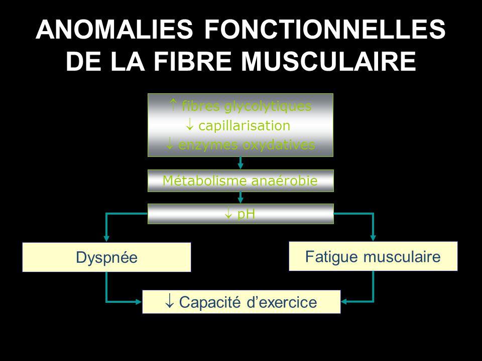 ANOMALIES FONCTIONNELLES DE LA FIBRE MUSCULAIRE