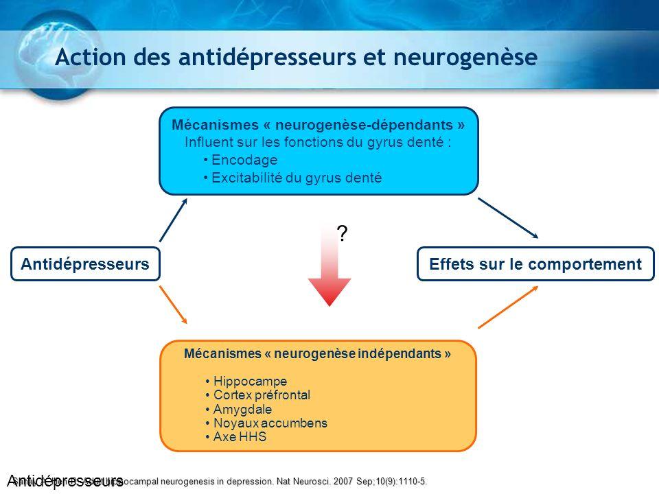 Action des antidépresseurs et neurogenèse