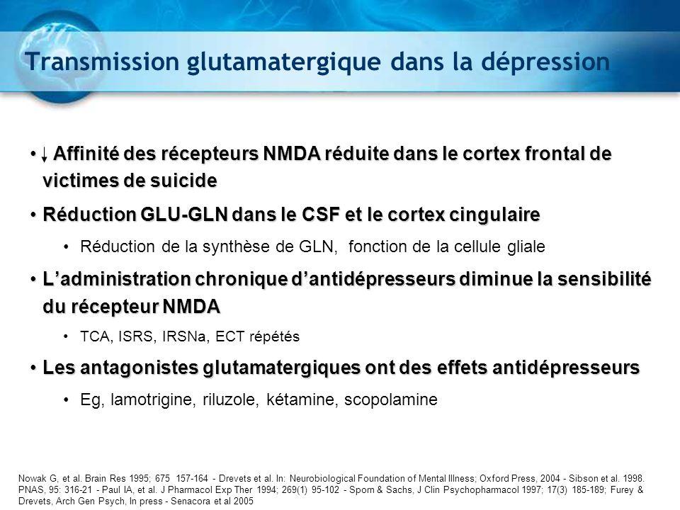 Transmission glutamatergique dans la dépression
