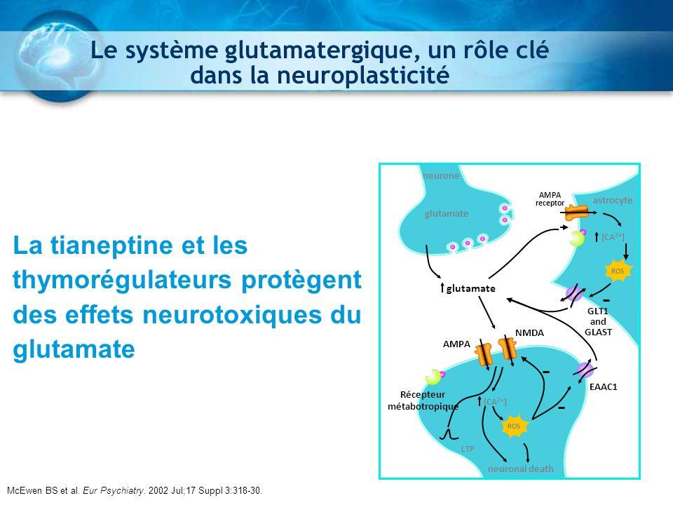 Le système glutamatergique, un rôle clé dans la neuroplasticité