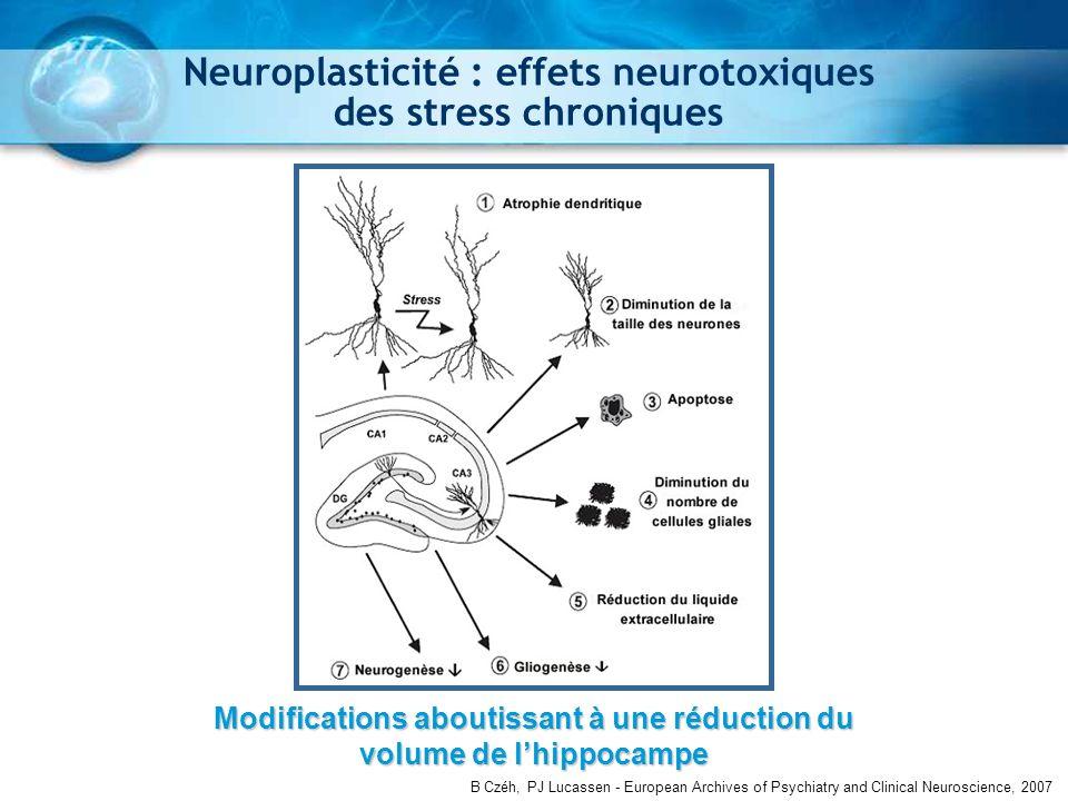 Neuroplasticité : effets neurotoxiques des stress chroniques