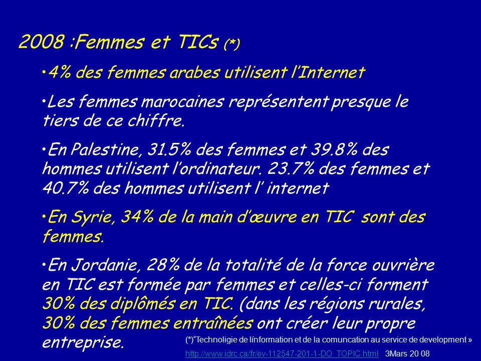 2008 :Femmes et TICs (*) 4% des femmes arabes utilisent l'Internet