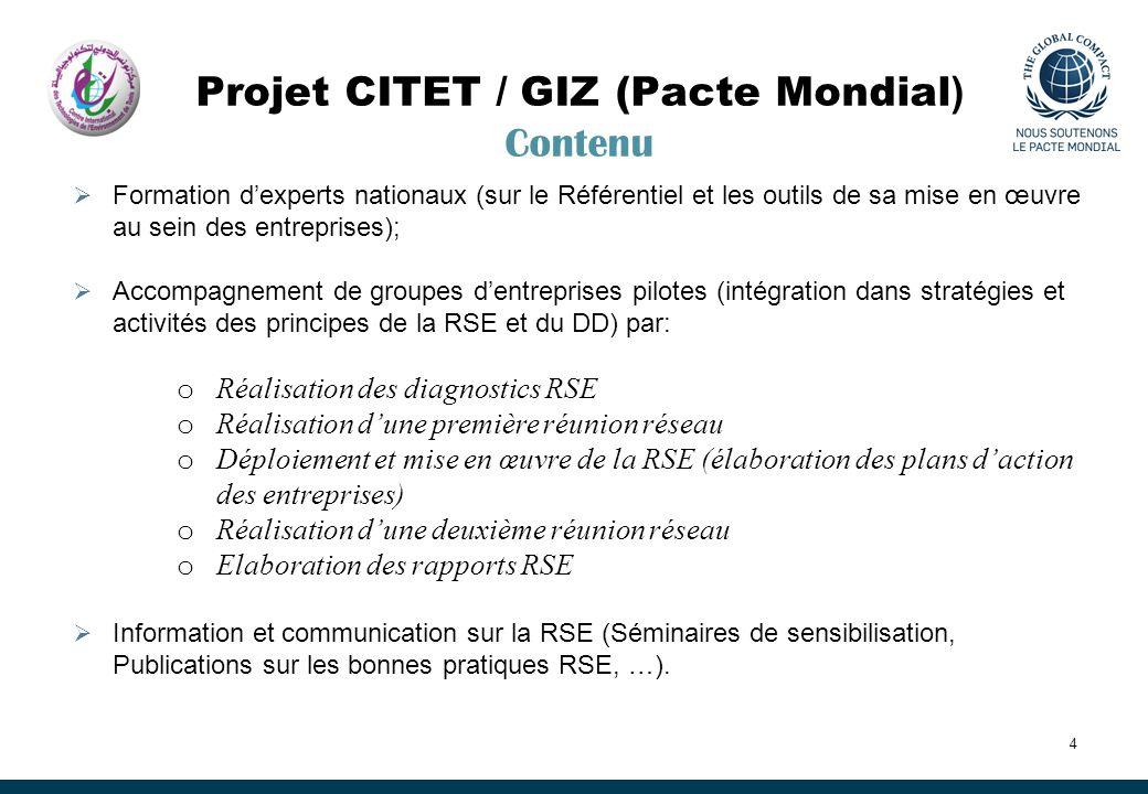 Projet CITET / GIZ (Pacte Mondial) Contenu