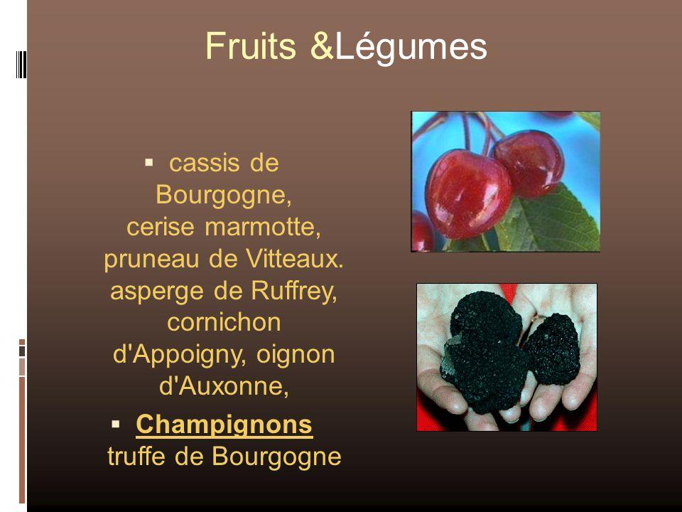 Champignons truffe de Bourgogne