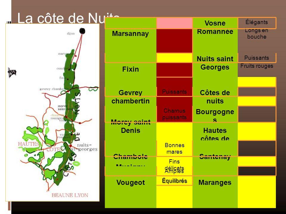 Côtes de nuits villages