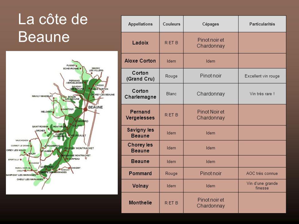 La côte de Beaune Ladoix Pinot noir et Chardonnay Aloxe Corton