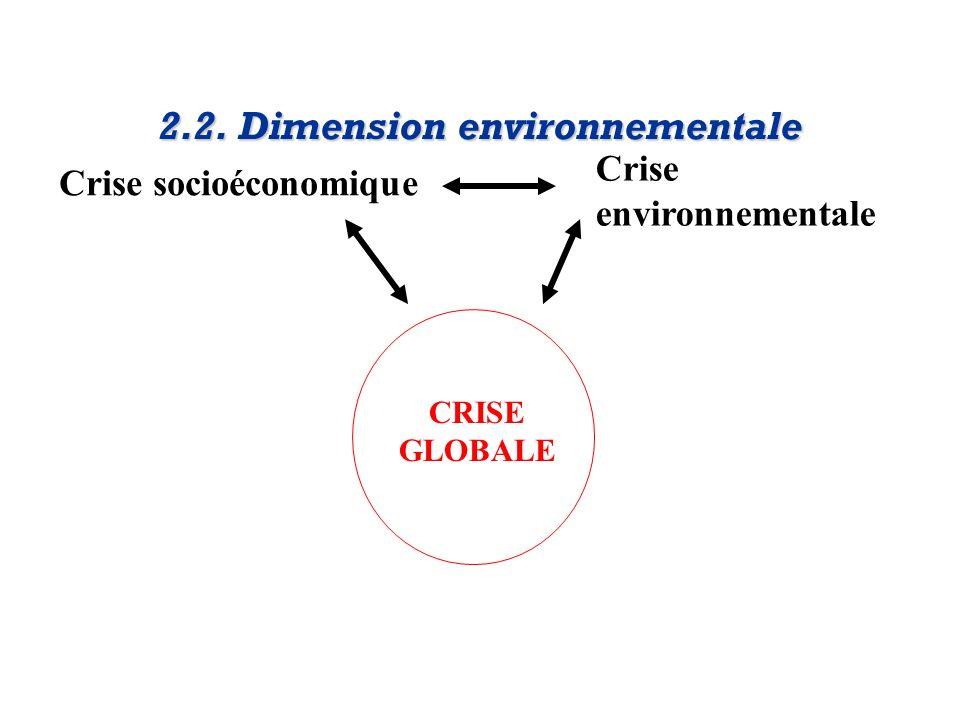2.2. Dimension environnementale