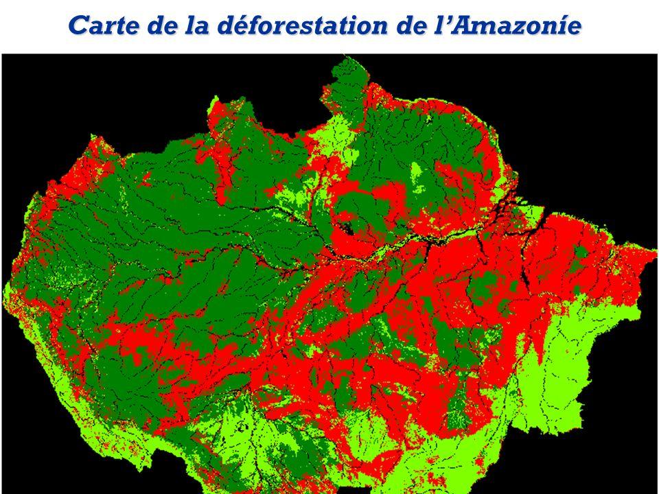 Carte de la déforestation de l'Amazoníe