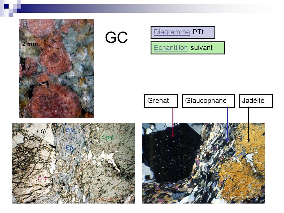 GC Diagramme PTt Echantillon suivant Grenat Glaucophane Jadéite