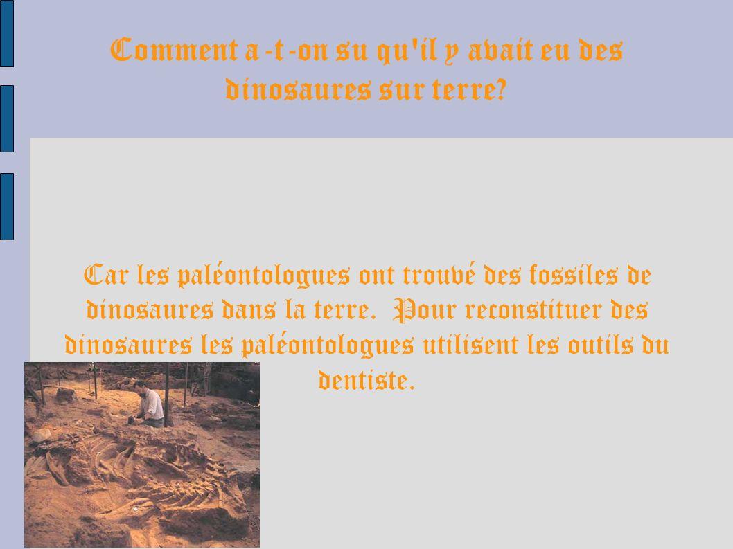 Comment a-t-on su qu il y avait eu des dinosaures sur terre