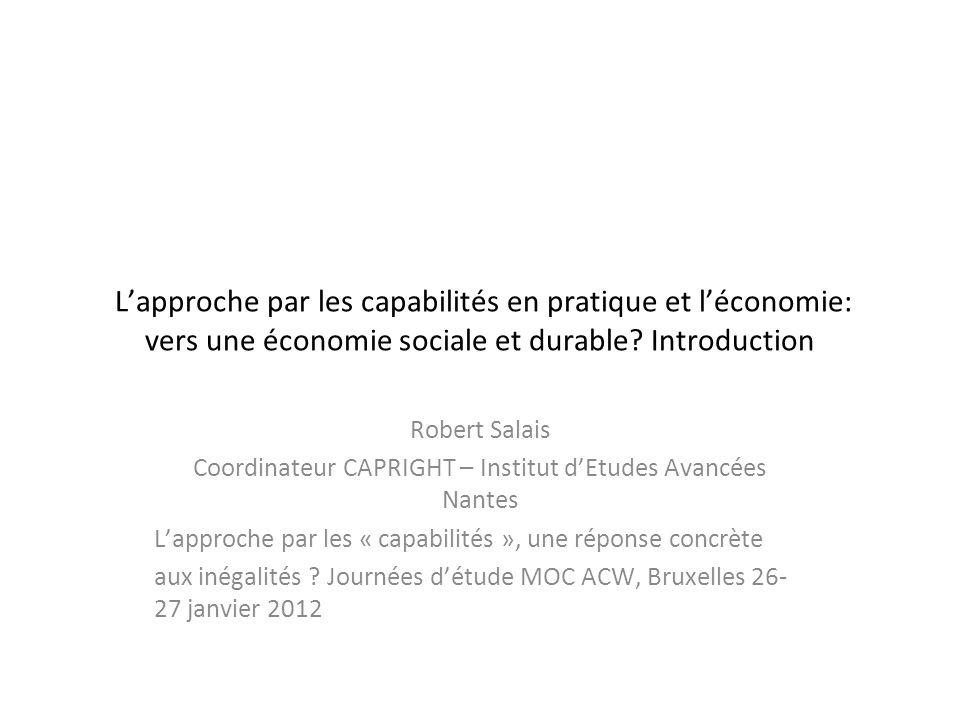 Coordinateur CAPRIGHT – Institut d'Etudes Avancées Nantes