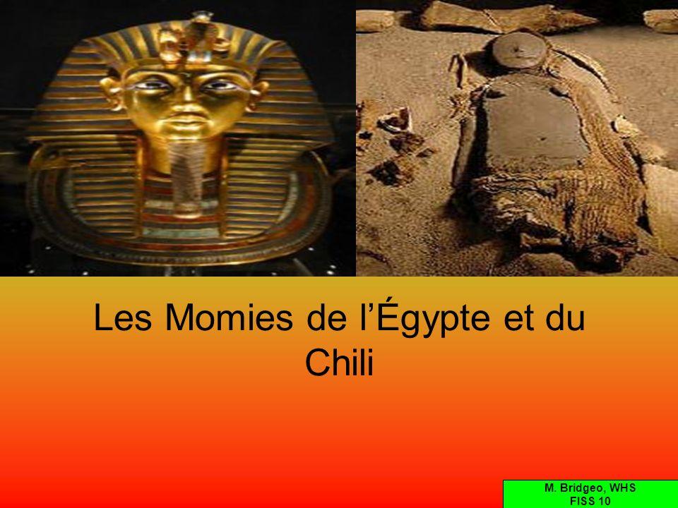 Les Momies de l'Égypte et du Chili