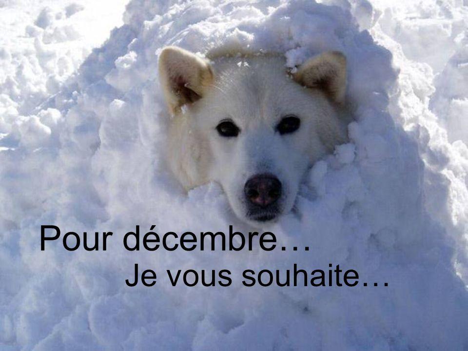 Pour décembre… Je vous souhaite…